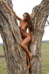 Candice Boucher desnuda en Playboy USA 2.010